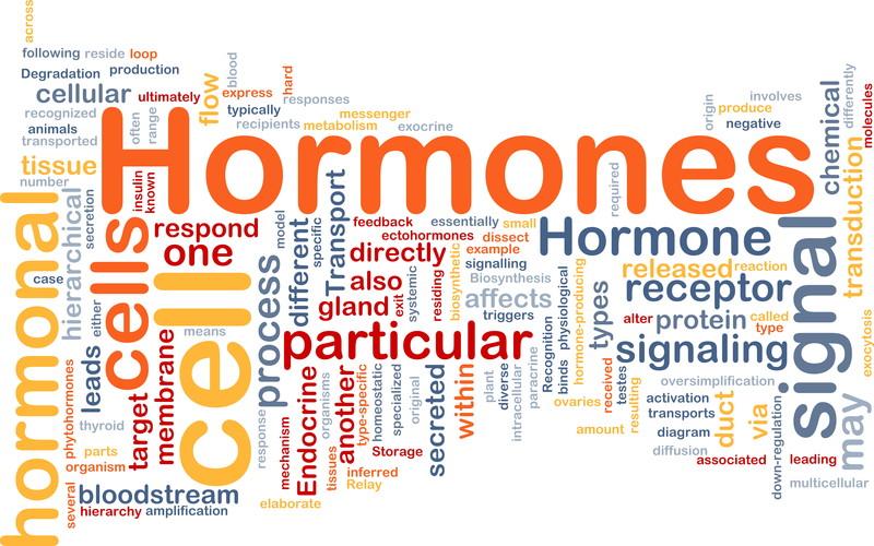 Triclosan – Hormone Disruptor